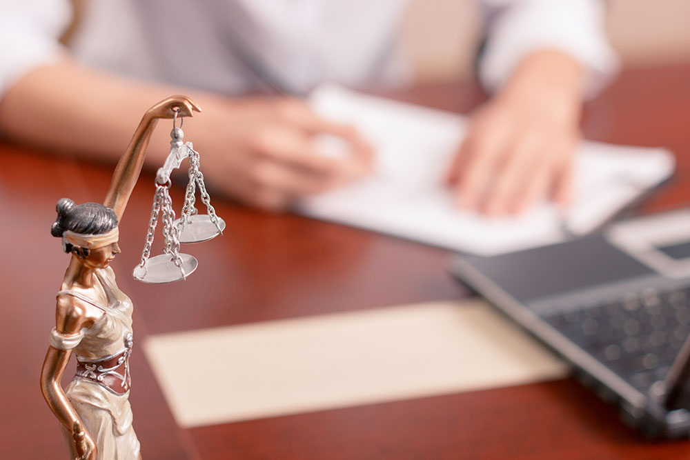 New Jersey Employment Litigation Lawyer   Popescu Law Group